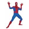 The Amazing Spider-Man Super Deluxe Teen Costume